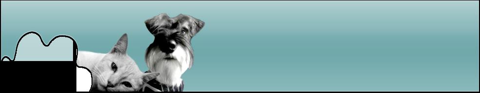 Frankford Animal Clinic's Company logo